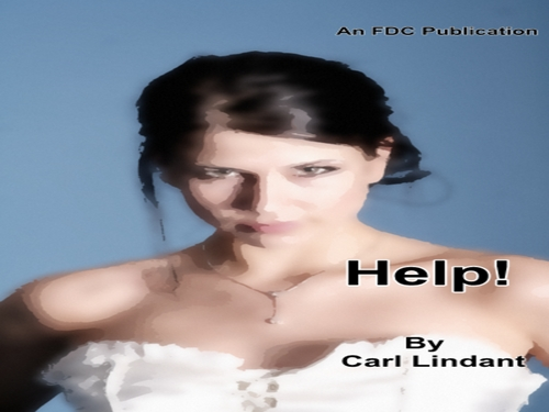 Product picture Help! by Carl Lindant